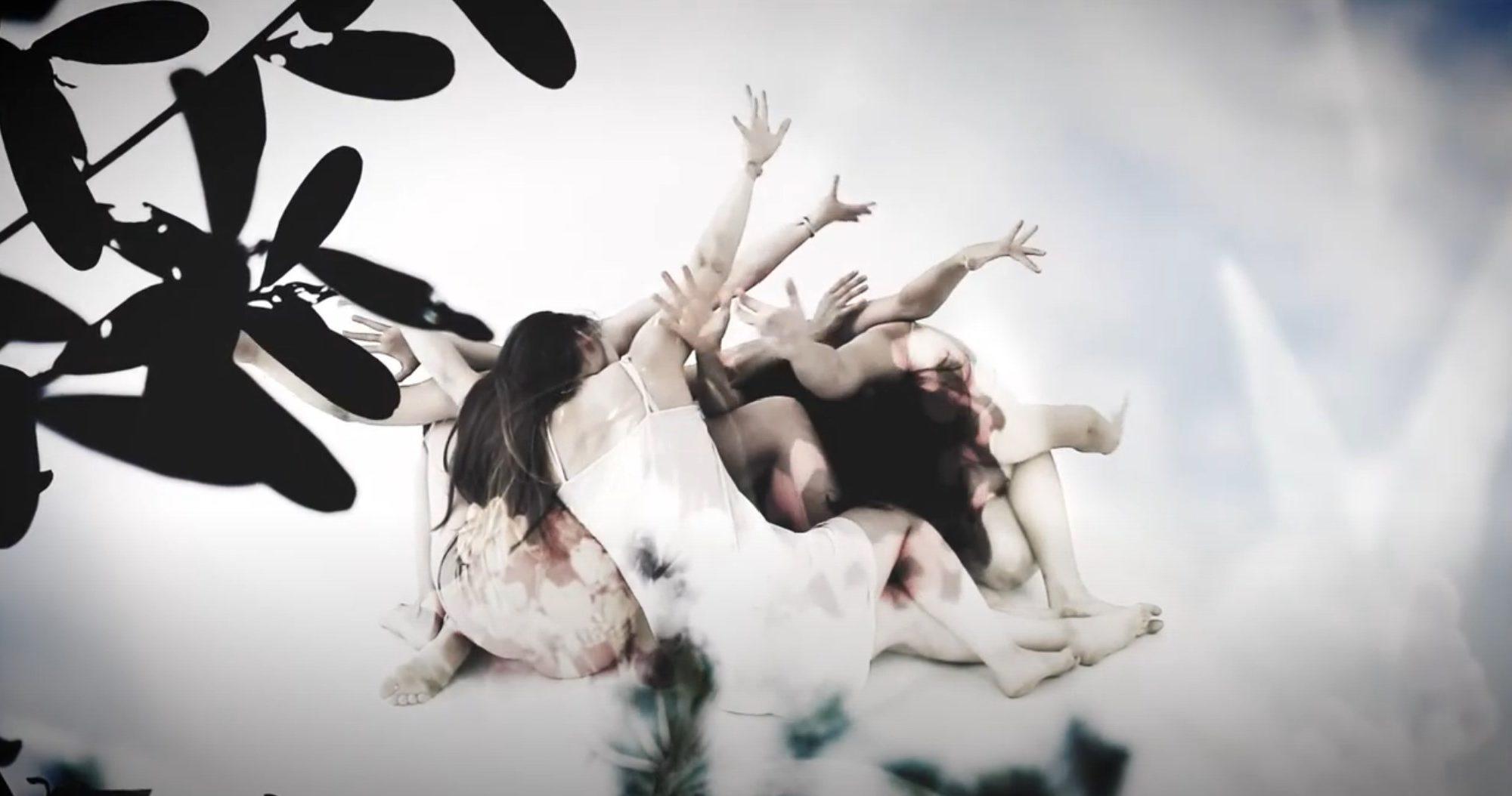 Hansan - Fjärilsvärld Video